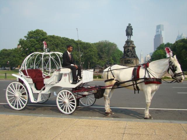 carriage img4 - 76 Carriage Company