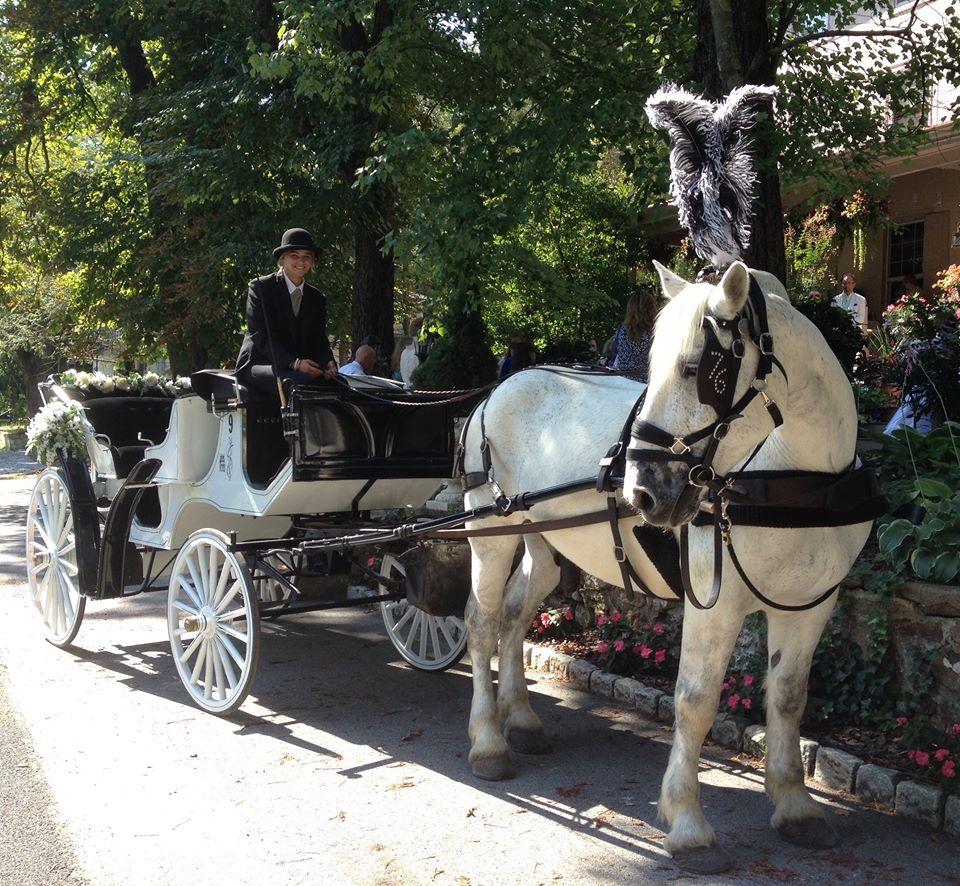 carriage img6 - 76 Carriage Company